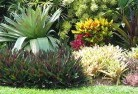 Alexander Heights Beach and coastal landscaping 8