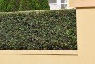 Alexander Heights Hard landscaping surfaces 8
